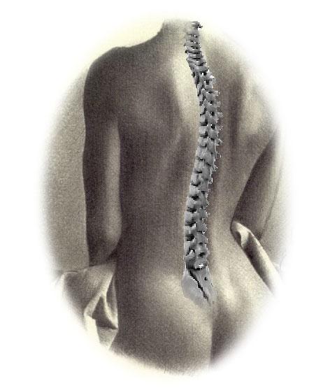 Los beneficios del Yoga para tu espalda
