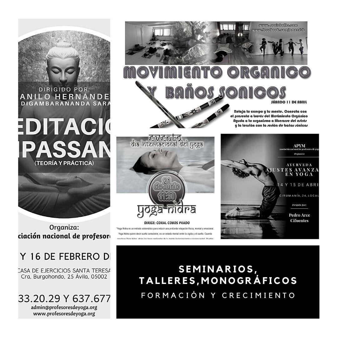 Cartel Seminarios APYM