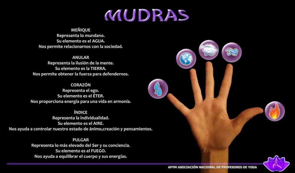 Descripción Mudras por falanges
